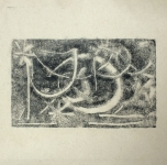 Monotipija tarp fotografijos ir tapybos