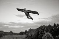 Žmogus–lėktuvas